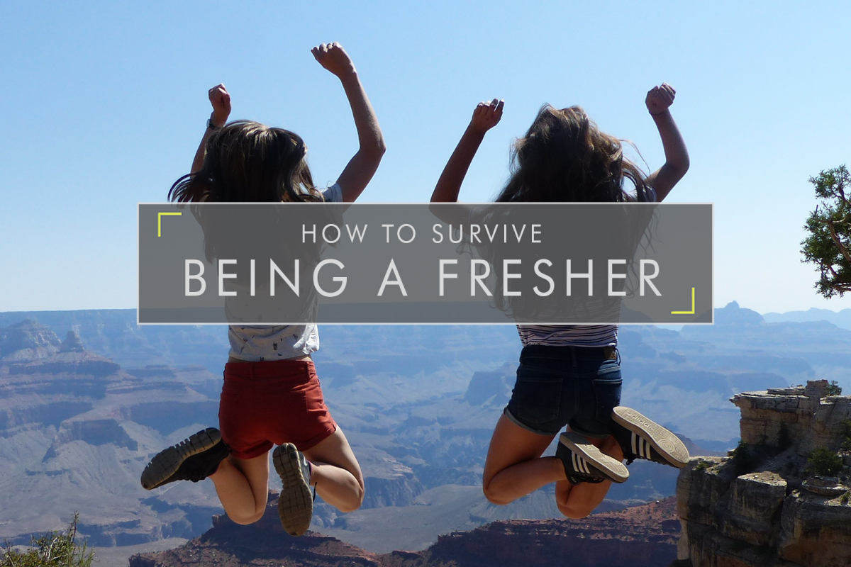 How to Survive Being a Fresher